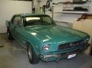 1966 Mustang HCS