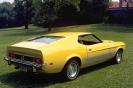 1973 Mustang
