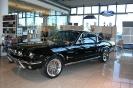 Mustang syning 17-04-2010