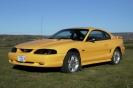 1998 Mustang