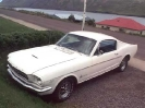 1965 - 1966