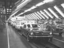 1965 Mustangs in 1964